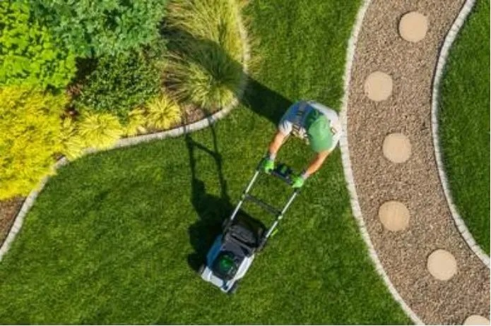 Santa Fe Landscape Pros - Five Of The Most Common Landscaping Questions